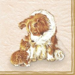 ANI192 CAT AND DOG ON BEIGE BACKGROUND
