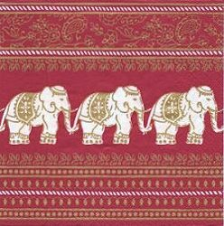ANI212 ELEPHANTS INDIA PAW