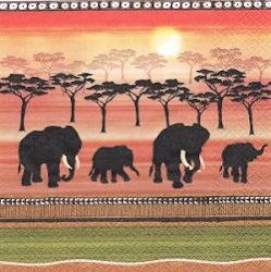 ANI289 ELEPHANTS AFRICAN SPIRIT