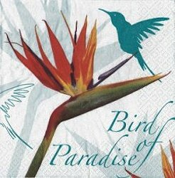 ANI317 BIRD OF PARADISE BLUE
