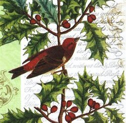 ANI321 BIRD IN THE HOLLY