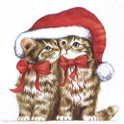 ANI328 TWO CHRITMAS KITTEN