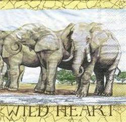 ANI011 ELEPHANTS WILD HEART AFRICA